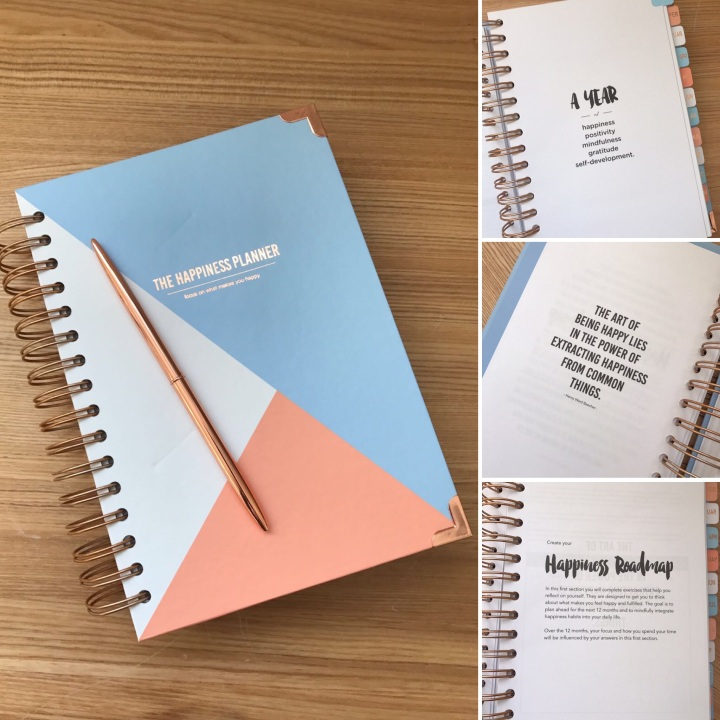 Happiness Planning For2017